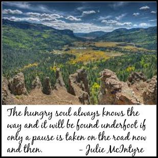 Julie McIntyre Quote