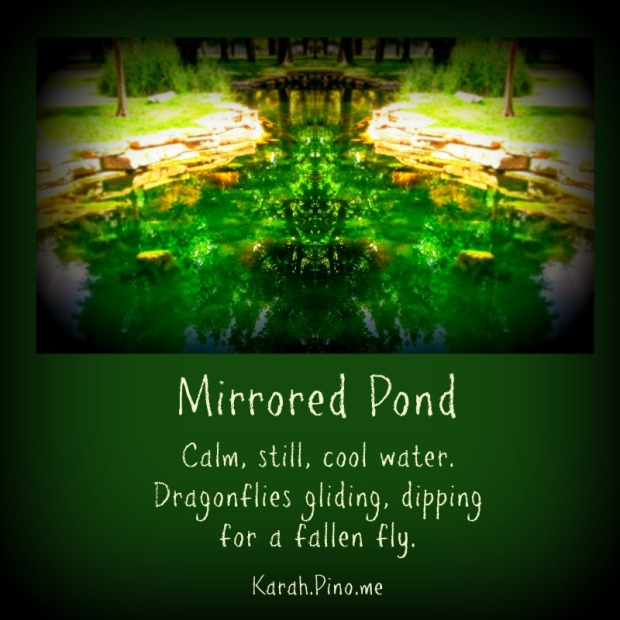 Mirrored Pond